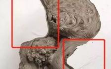 林彩娟:崖柏毛料的作假手段及辨别方法