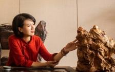 【林彩娟:崖柏发展需要做好三个关键点】中国崖柏收藏家藏品展之柏家论柏